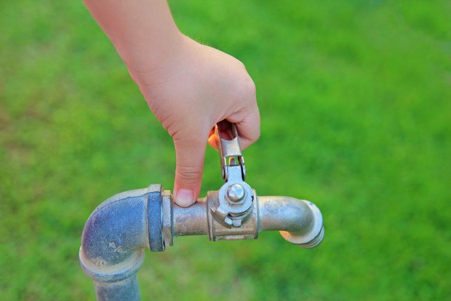 C mo cuidar el agua blog de - Como cuidar las hortensias de exterior ...